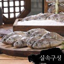 굴비천년 영광 법성포 참맛 굴비 실속구성 40미/햇굴비